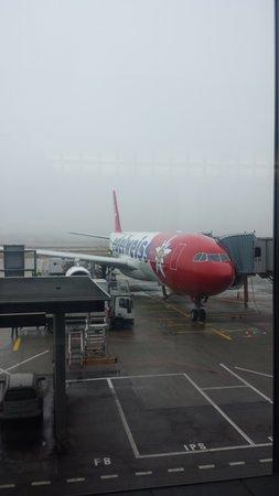 Edelweiss Air: Arrivée à Zurich