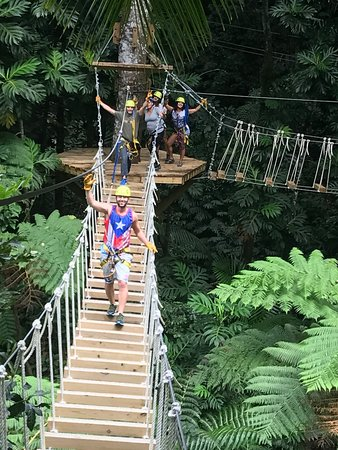 El Yunque Rainforest Corcovado Adventures