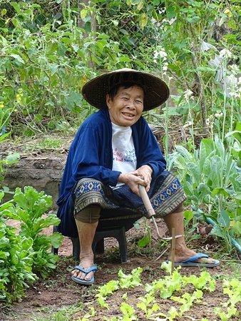 Muang Ngoi Neua, Laos: La maîtresse des lieux