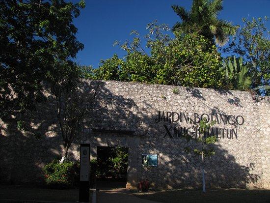 Jardin botanico x 39 much haltun campeche mexico top tips for Jardin botanico xmuch haltun