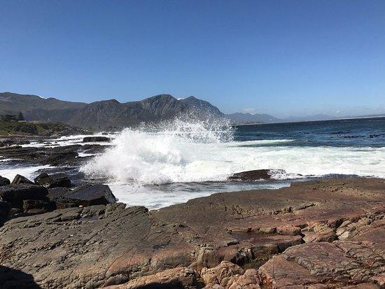 Hermanus, South Africa: photo2.jpg