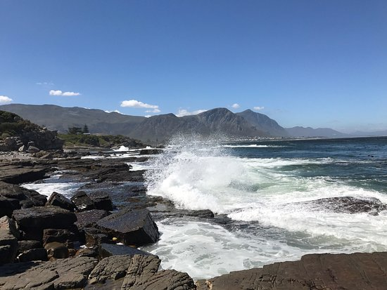 Western Cape, South Africa: photo1.jpg