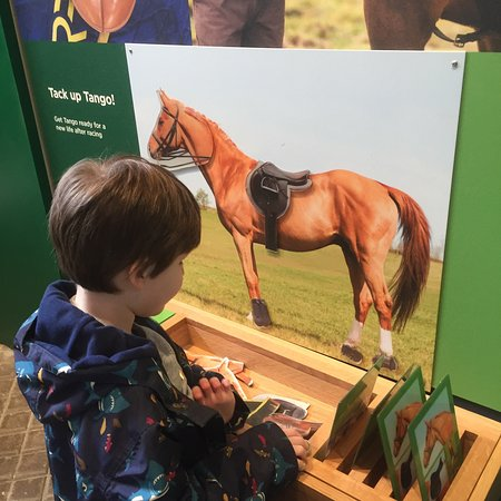 National Heritage Centre for Horseracing & Sporting Art: photo2.jpg