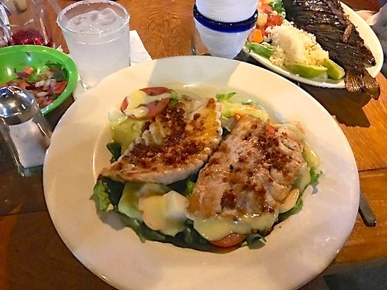 La Sirena Gorda: Fresh sea bass over salad