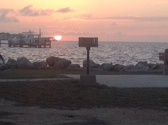 Jolly Roger RV Resort: photo1.jpg