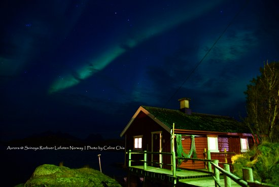 Svinøya Rorbuer: Northern Light appeared on top of my cabin during my stay