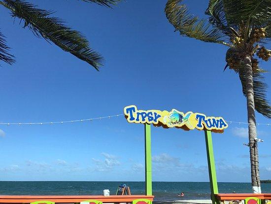Tipsy Tuna: photo0.jpg