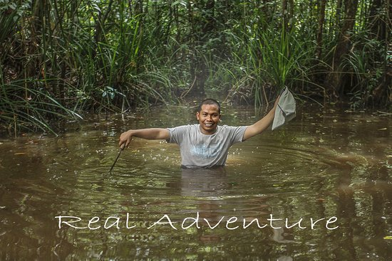 Tanjung Puting National Park: walking in the water really awesome !!!