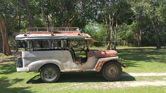 Busuanga Island, Filippine: Jeep safari