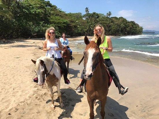 Caribe Horse Riding Club: Best horseback ride ever!!