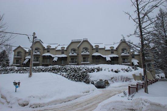 Piedmont, Canada: Vue de l'hôtel depuis la route