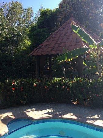Pool - Picture of Guest House La Belle Cite, Playa Coronado - Tripadvisor