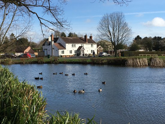 Hanley Swan, UK: Hotel from the duck pond