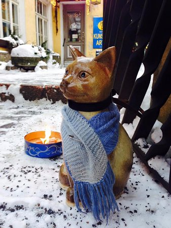 Bogapott: The cat welcomes all the visitors!