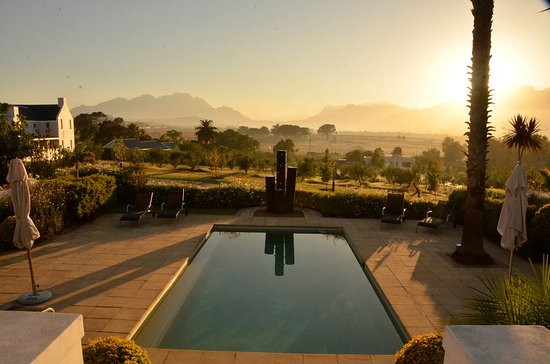 The Wild Mushroom Boutique Hotel: Early morning view across the pool