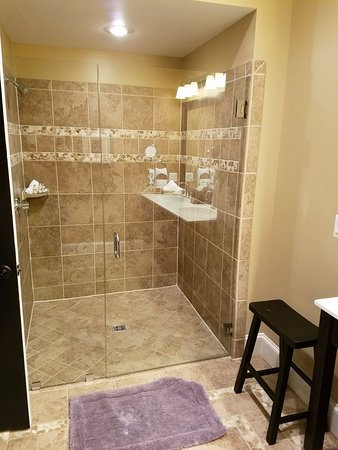 Suites at 249: Violetta Suite - Very large shower