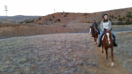 """Akhal-Teke Horse Riding Center: 20170305_173848_large.jpg"""""""