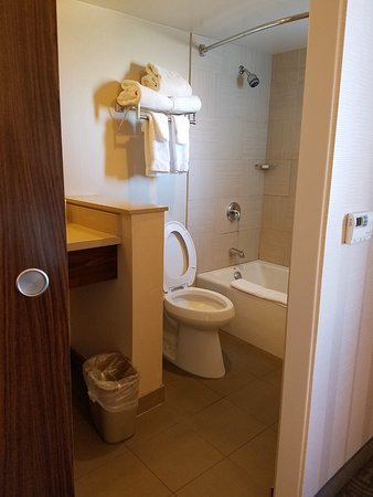 New toilet fixtures and window over tub/shower. - Picture of Gold ...