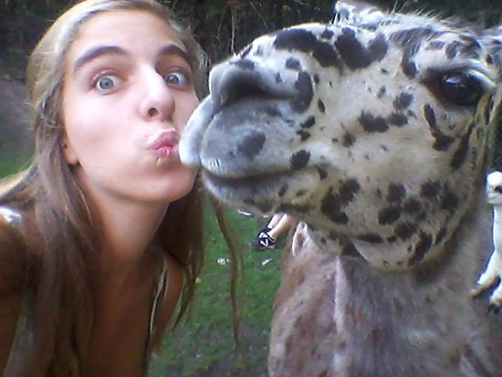 Bretten Tierpark: Lelijkste lama ooit