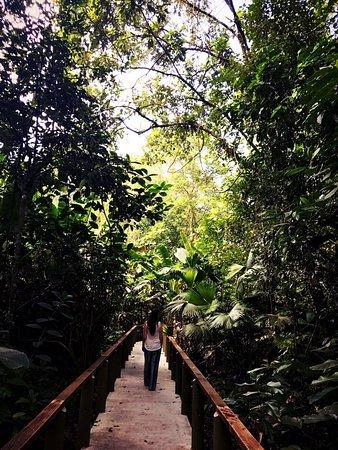 Toucan & Tarpon: photo5.jpg