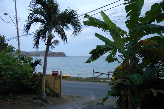 Speyside, Tobago: View from the apartment