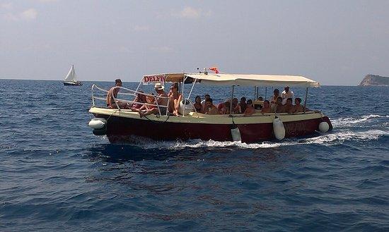 Delfin Boats