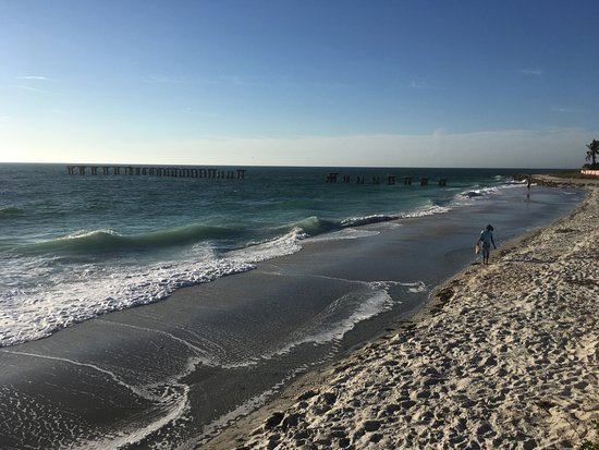 Boca Grande, FL: Great shelling beach area with the old pillars from an old dock
