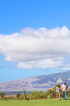 Haicai, Havaí: Hawaii Sea Spirits