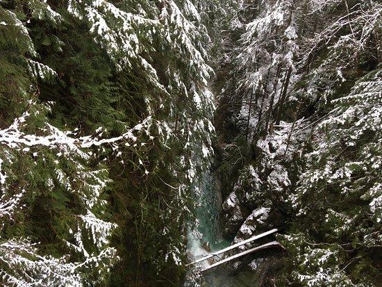 North Vancouver, Canada: Lynn Canyon Park
