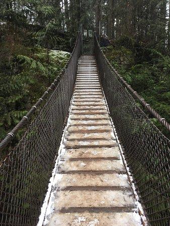 Lynn Canyon Suspension Bridge: photo0.jpg