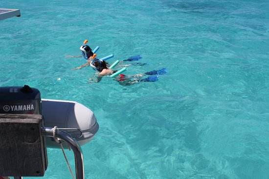 Jolly Harbour, Antigua: snorkelling cades reef