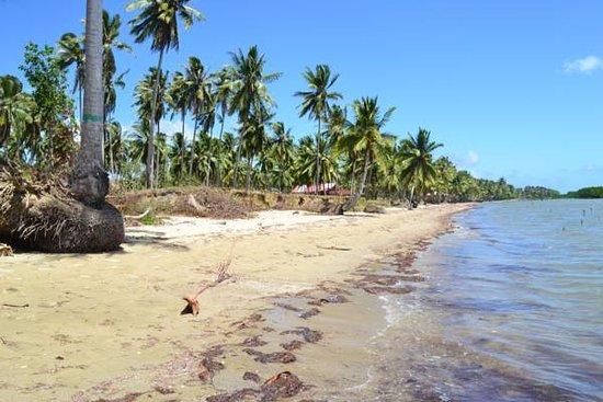 PRIVATE BEACH ,BANQUETS FACILITIES - Picture of La Caballa Beach Resort, Palawan Island - Tripadvisor