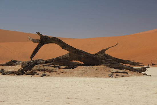 Namib-Naukluft Park, Namibia: Dead Valley