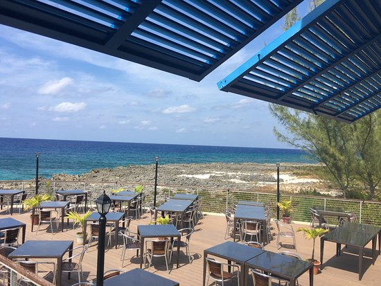 The Cracked Conch by the Sea : Conch ceviche and cracked conch apps. And the amazing views!