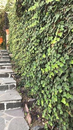 Rancho Hotel El Atascadero: photo0.jpg