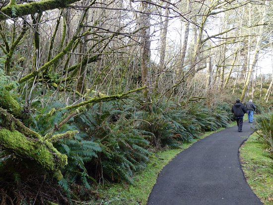 Ilwaco, WA: Trail from Parking Lot (State Park pass required for free parking) to Interpretive Center