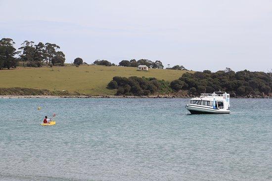 Triabunna, Austrália: Boat moored off Maria Island