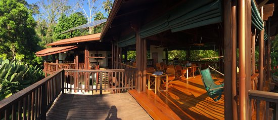 Playa Nicuesa Rainforest Lodge: bar and dining room