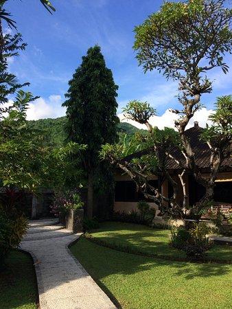 Hidden Paradise Cottages: Территория Богота ухоженными цветами и деревьями.