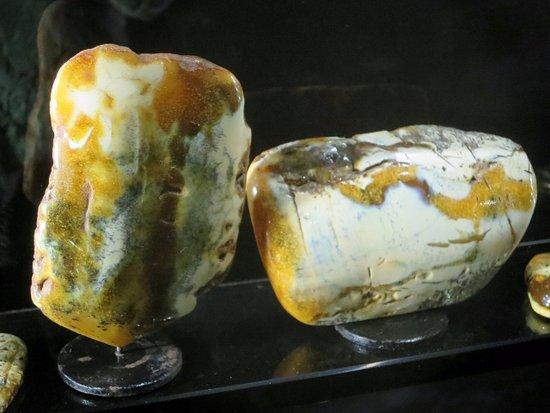 Amber Museum-Gallery (Gintaro Muziejus-Galerija): いろんな琥珀が展示されています