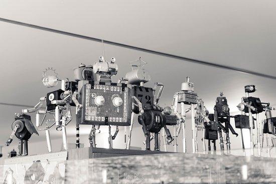 Centro Galego de Arte Contemporánea: Exposición de Robots en tienda del museo