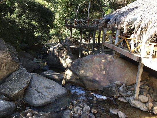 EDENVA El Eden de Vallarta : Creek next to restaurant (zip lines above!)
