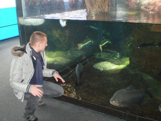 photo3 - foto di acquario di genova, genova - tripadvisor