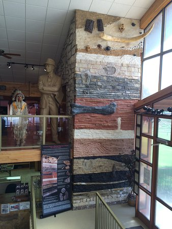 Creation Evidence Museum: This was so neat, the different layers of earth from Creation