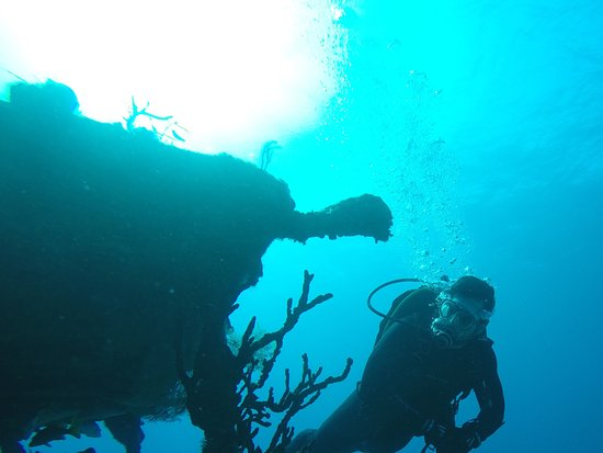 Tiny, Canada: Diving on Roggies wreck in the Bahamas