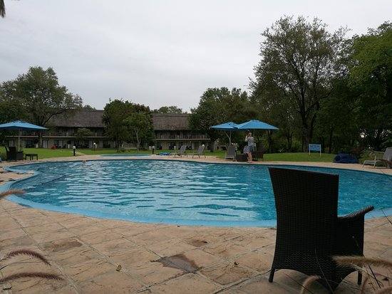 La piscine picture of a 39 zambezi river lodge victoria for La piscine review