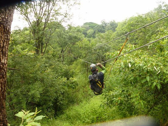 Wild Horizons Vic Falls Canopy Tour: One of the 9 'zips'
