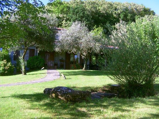 Villafranca in Lunigiana, อิตาลี: giardino