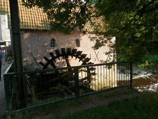 Woold, Belanda: Als je daar de koffie op hebt gedronken kan je direct van de molen een mooie wandeling maken.