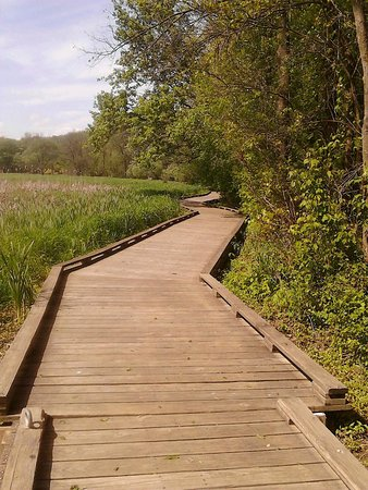 The boardwalk trails at Wildwood Park are my favorite!